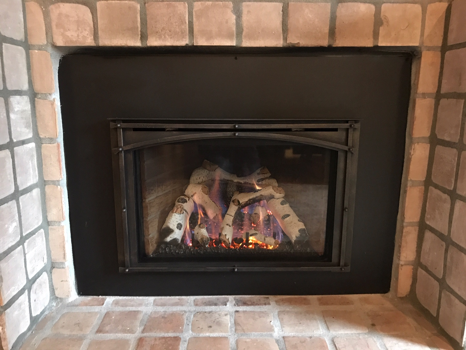 Roosevelt 29 Gas Insert Custom Fireside